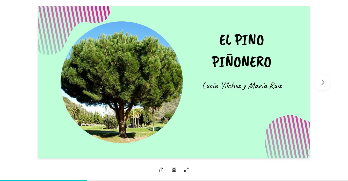 Screenshot_2020-03-08-EL-PINO-PIÑONERO