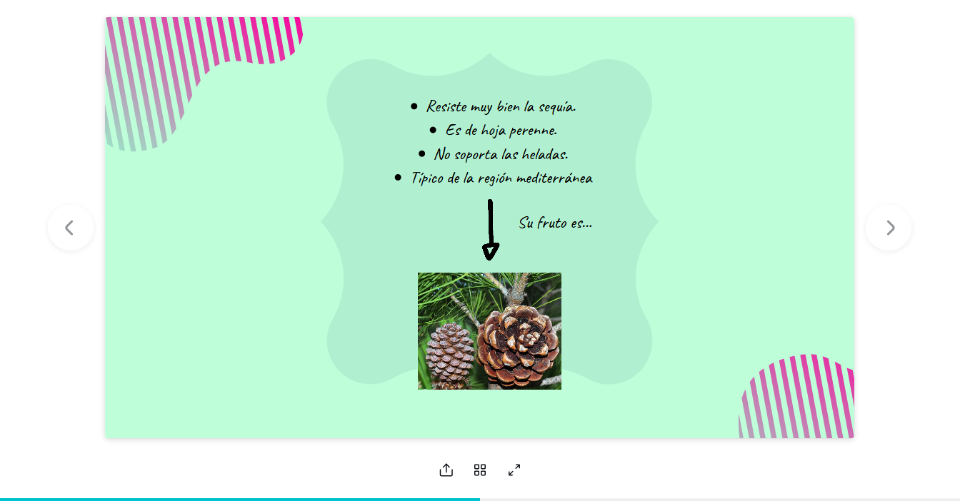 Screenshot_2020-03-08-EL-PINO-PIÑONERO1