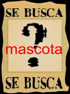 """Concurso """"Se busca Mascota"""""""